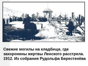 Свежие могилы на кладбище, где захоронены жертвы Ленского расстрела. 1912. Из