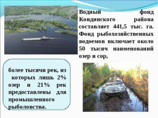 Водный фонд Кондинского района составляет 441,5 тыс. га. Фонд рыбохозяйственн