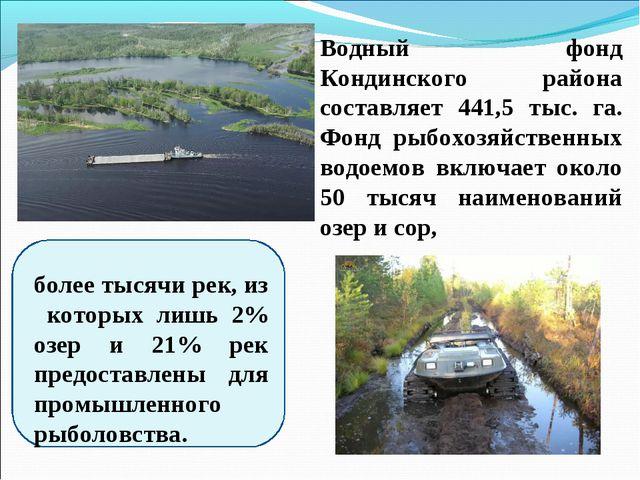 Водный фонд Кондинского района составляет 441,5 тыс. га. Фонд рыбохозяйственн...