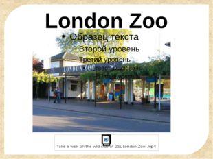 London Zoo FokinaLida.75