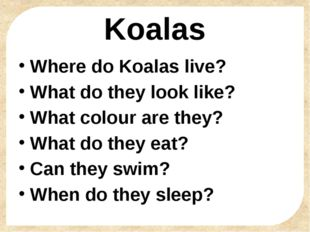Koalas Where do Koalas live? What do they look like? What colour are they? Wh