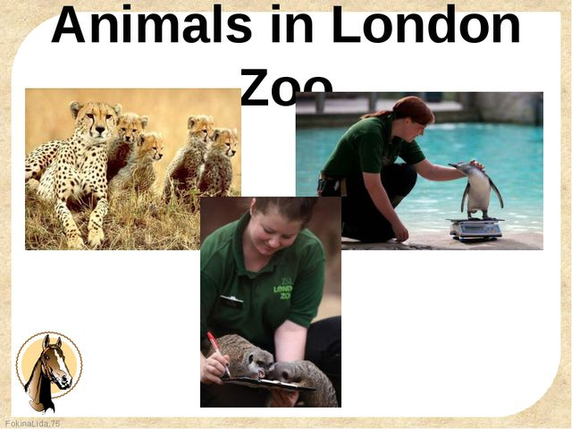 Animals in London Zoo FokinaLida.75