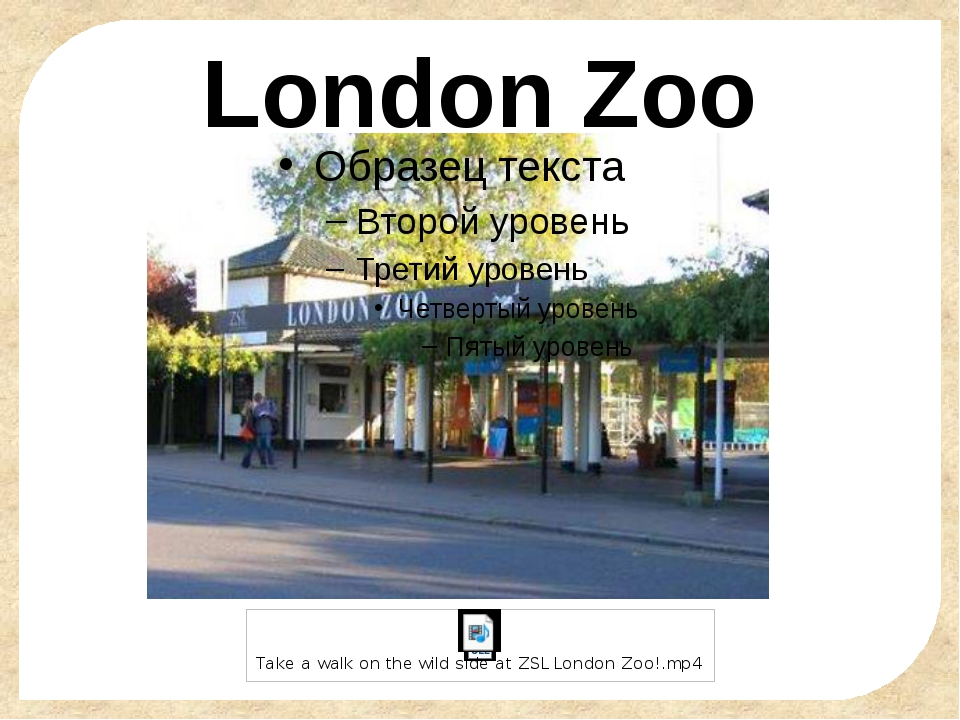 London Zoo FokinaLida.75