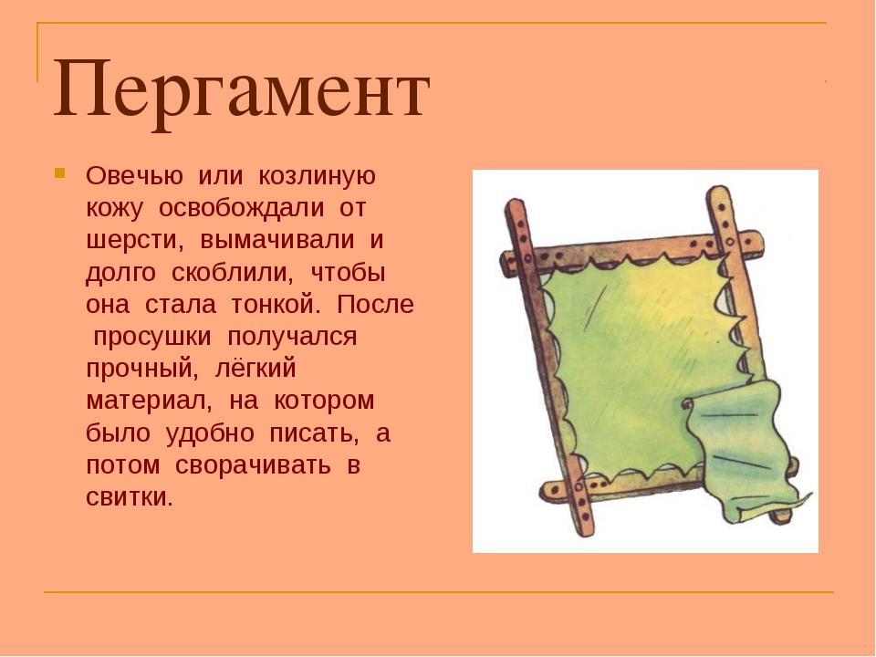 Пергамент Овечью или козлиную кожу освобождали от шерсти, вымачивали и долго...