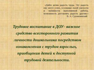 «Дайте детям радость труда. Эту радость ему несут успех, осознание своей уме