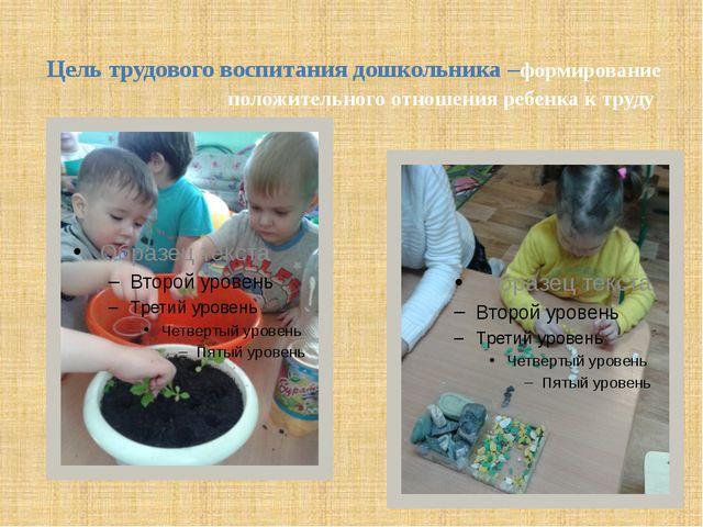 Цель трудового воспитания дошкольника –формирование положительного отношения...