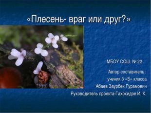 «Плесень- враг или друг?» МБОУ СОШ № 22 Автор-составитель : ученик 3 «Б» кла