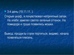 3-й день (19.11.11. ): Открыв шкаф, я почувствовал неприятный запах. На хлебе