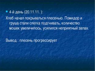 4-й день (20.11.11. ): Хлеб начал покрываться плесенью. Помидор и груша стали