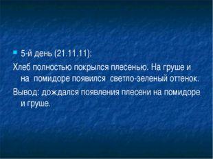 5-й день (21.11.11): Хлеб полностью покрылся плесенью. На груше и на помидоре