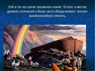 Ной в тех же целях просмолил ковчег. Кстати, в местах древних поселений учёны
