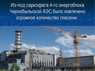 Из-под саркофага 4-го энергоблока Чернобыльской АЭС было извлечено огромное к