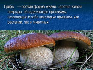 Грибы́ — особая форма жизни, царство живой природы, объединяющее организмы, с