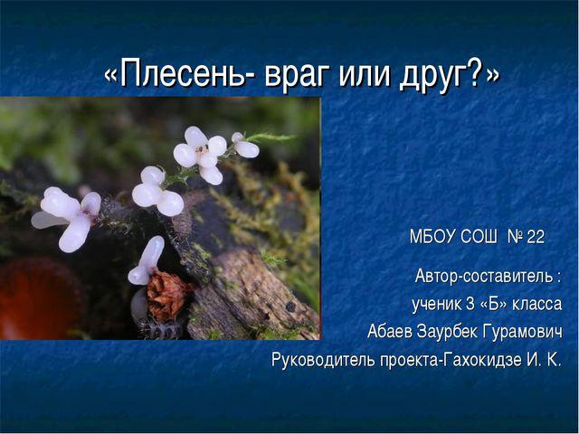 «Плесень- враг или друг?» МБОУ СОШ № 22 Автор-составитель : ученик 3 «Б» кла...