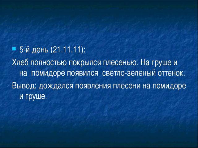 5-й день (21.11.11): Хлеб полностью покрылся плесенью. На груше и на помидоре...