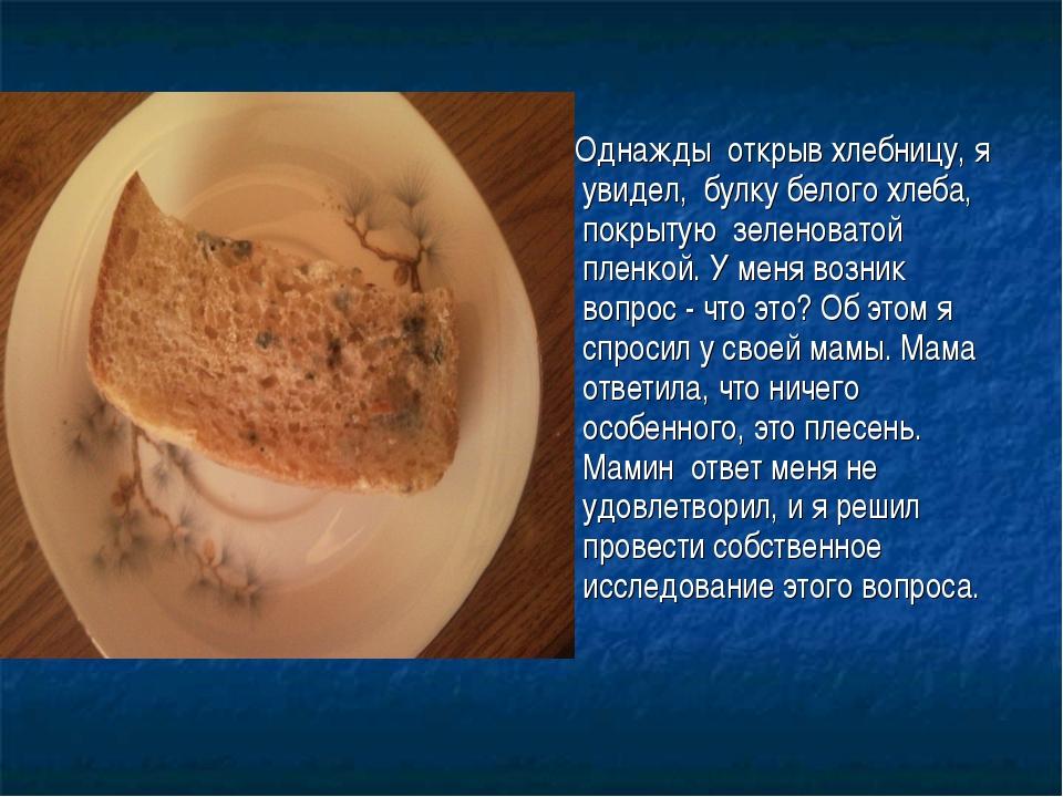 Однажды открыв хлебницу, я увидел, булку белого хлеба, покрытую зеленоватой...