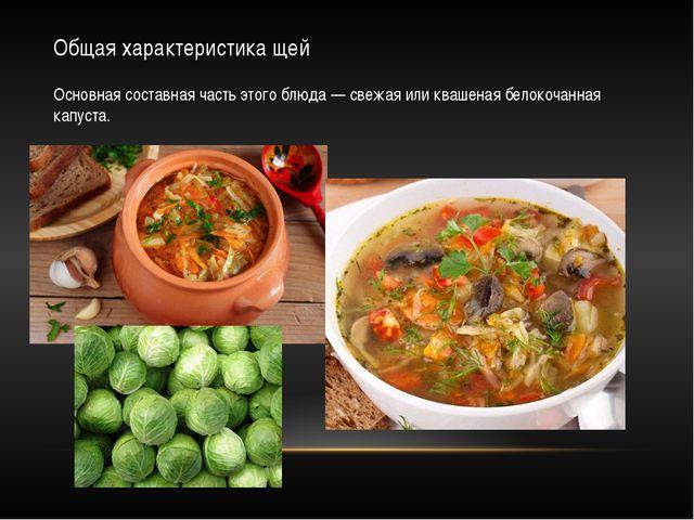 Общая характеристика щей Основная составная часть этого блюда — свежая или кв...