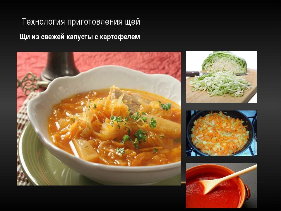 Технология приготовления щей Щи из свежей капусты с картофелем