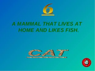 A MAMMAL THAT LIVES AT HOME AND LIKES FISH.