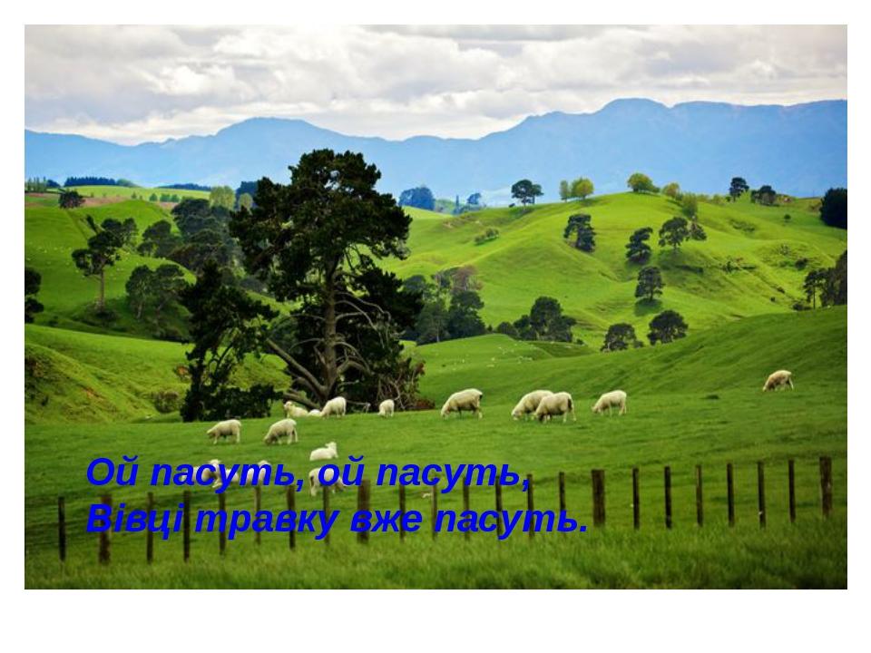 Ой пасуть, ой пасуть, Вівці травку вже пасуть.
