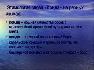 Этимология слова «Конда» на разных языках: конда – мощная смолистая сосна с