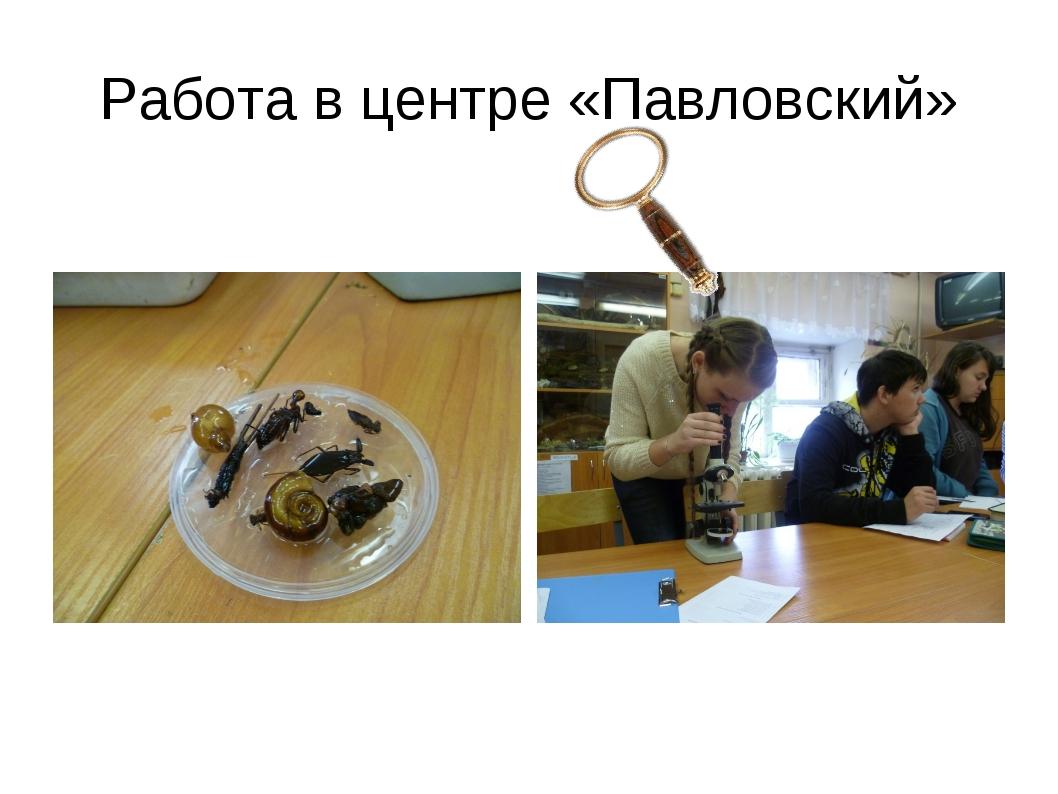 Работа в центре «Павловский»