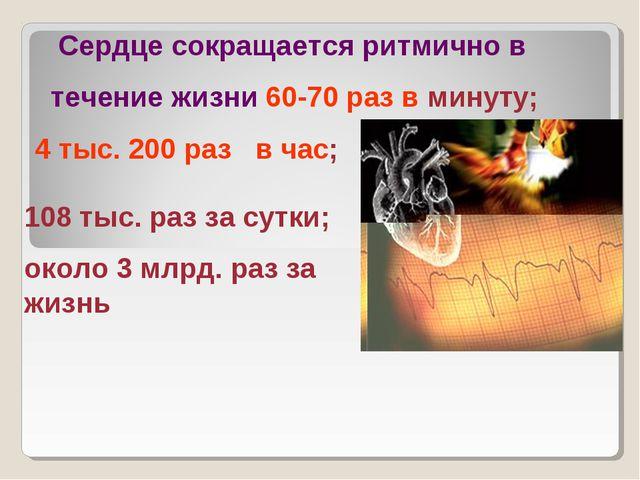Сердце сокращается ритмично в течение жизни 60-70 раз в минуту; 4 тыс. 200 р...