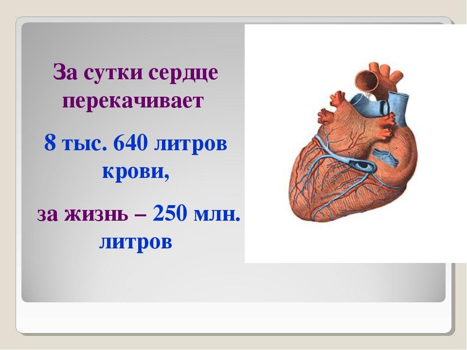 За сутки сердце перекачивает 8 тыс. 640 литров крови, за жизнь – 250 млн. лит...