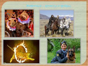 Животные – артисты и актёры