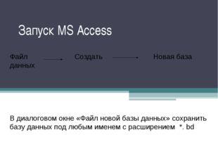 Запуск MS Access Пуск Все программы MS Access Файл Создать Новая база данных