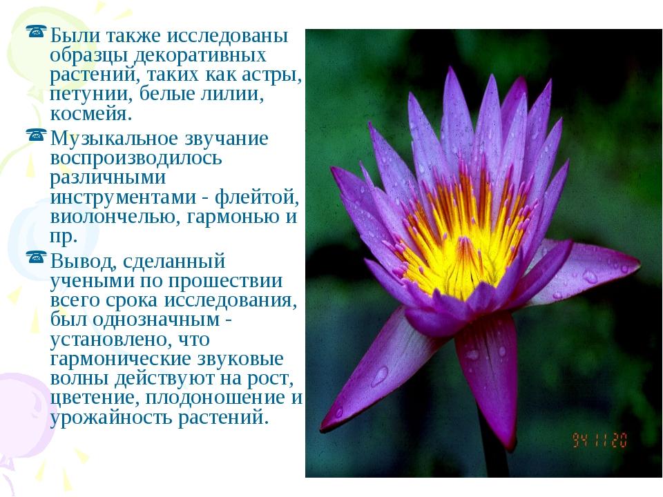 Были также исследованы образцы декоративных растений, таких как астры, петуни...