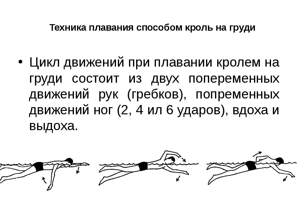 Техника плавания способом кроль на груди Цикл движений при плавании кролем на...