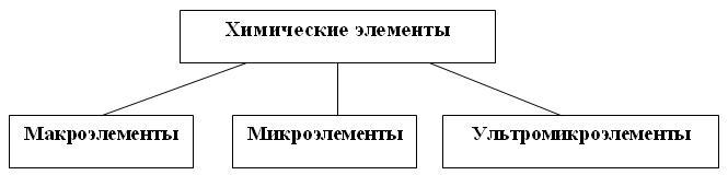 pic5_2