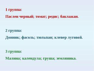 1 группа: Паслен черный; томат; редис; баклажан. 2 группа: Донник; фасоль; тю