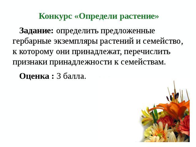 Конкурс «Определи растение» Задание: определить предложенные гербарные экземп...