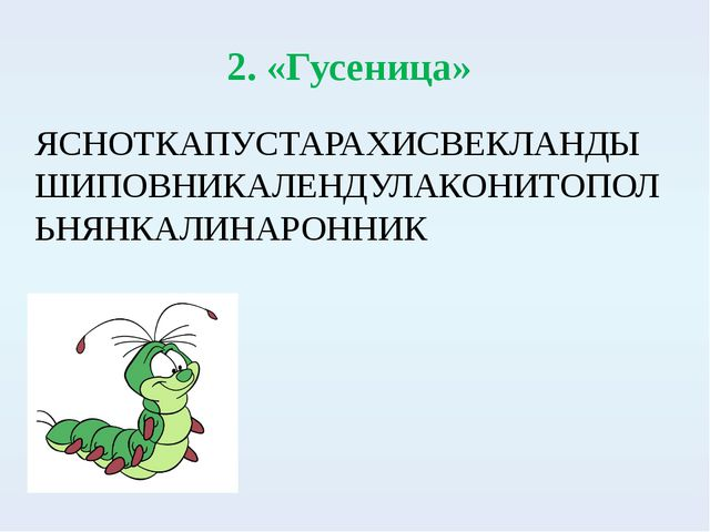 2. «Гусеница» ЯСНОТКАПУСТАРАХИСВЕКЛАНДЫШИПОВНИКАЛЕНДУЛАКОНИТОПОЛЬНЯНКАЛИНАРО...