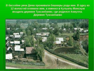 В бассейне реки Дема проживали башкиры рода мин. В одну из 12 волостей племен