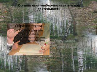 Организация учебно-познавательной деятельности Игры; Олимпиады Предметные дек