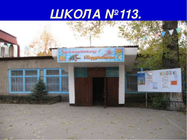 ШКОЛА №113.