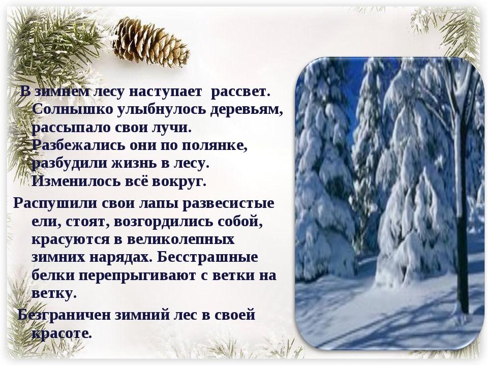 В зимнем лесу наступает рассвет. Солнышко улыбнулось деревьям, рассыпало сво...