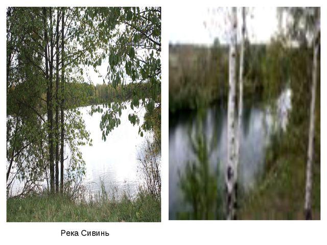 Река Сивинь