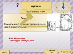 Начальная ставка – 1 балл 12 3 6 9 Ответ: Митохондрии - синтезируют молекулы