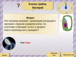12 3 6 9 Ответ: Ядра. Клетки грибов, бактерий Продолжить игру Закончить игру