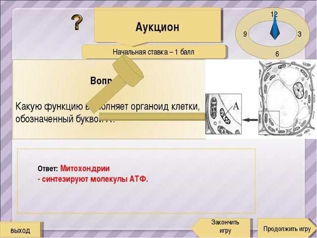 Начальная ставка – 1 балл 12 3 6 9 Ответ: Митохондрии - синтезируют молекулы...