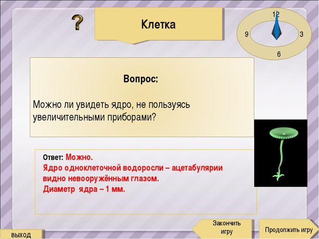 12 3 6 9 Ответ: Можно. Ядро одноклеточной водоросли – ацетабулярии видно нево...