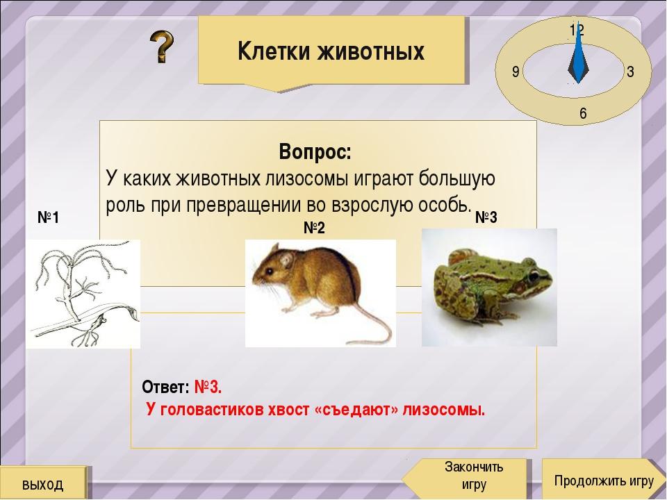 12 3 6 9 Ответ: №3. У головастиков хвост «съедают» лизосомы. Клетки животных...