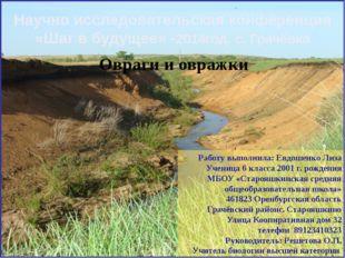 Овраги и овражки Работу выполнила: Евдошенко Лиза Ученица 6 класса 2001 г. ро