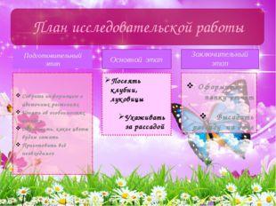 Подготовительный этап Собрать информацию о цветочных растениях Узнать об особ