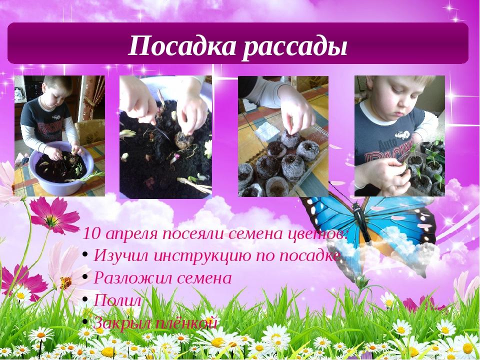 Посадка рассады 10 апреля посеяли семена цветов: Изучил инструкцию по посадке...