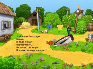 .С бока на бок ходит птица, В воде любит порезвиться, Не летает за моря И кр